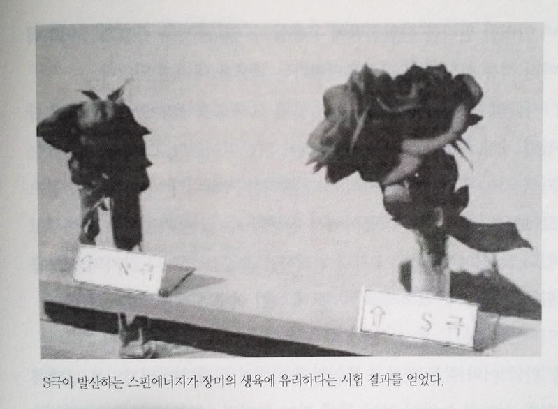 Click image for larger version.  Name:장미실험.jpg Views:1048 Size:46.9 KB ID:314